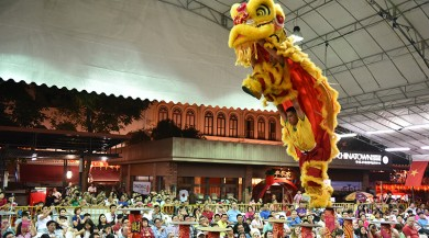 cny lion dance competition