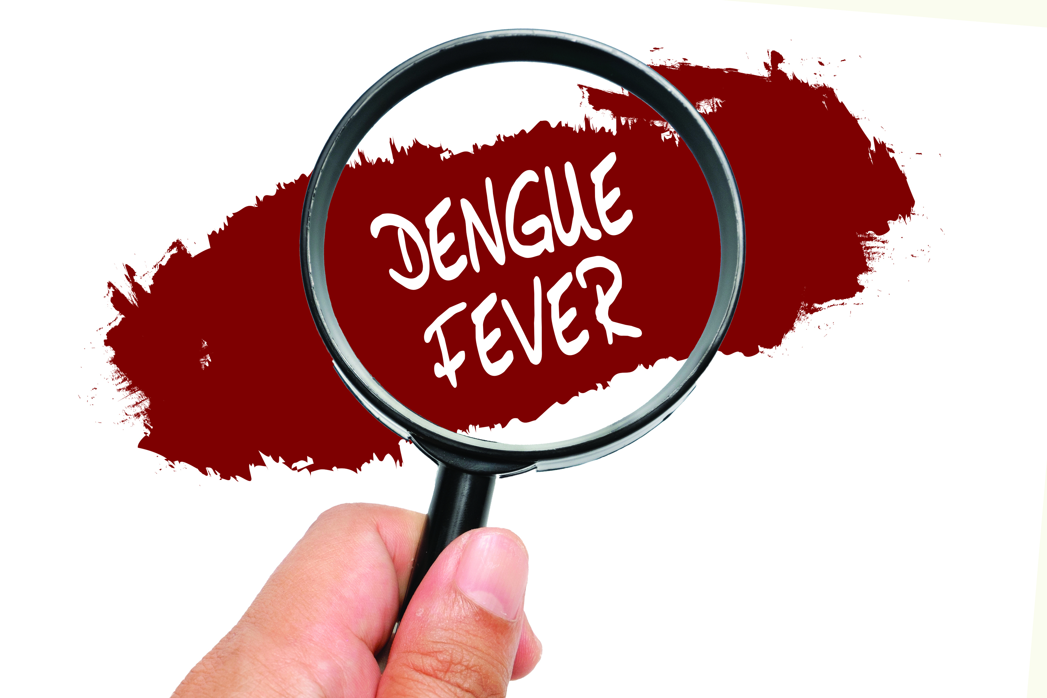 dengue fever in children